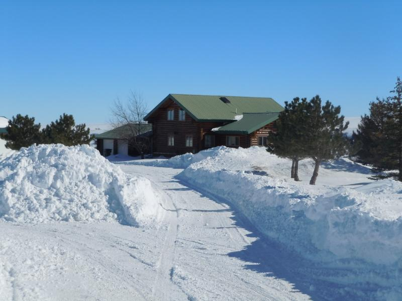 Spruce Lodge - Image 1 - Red Lodge - rentals