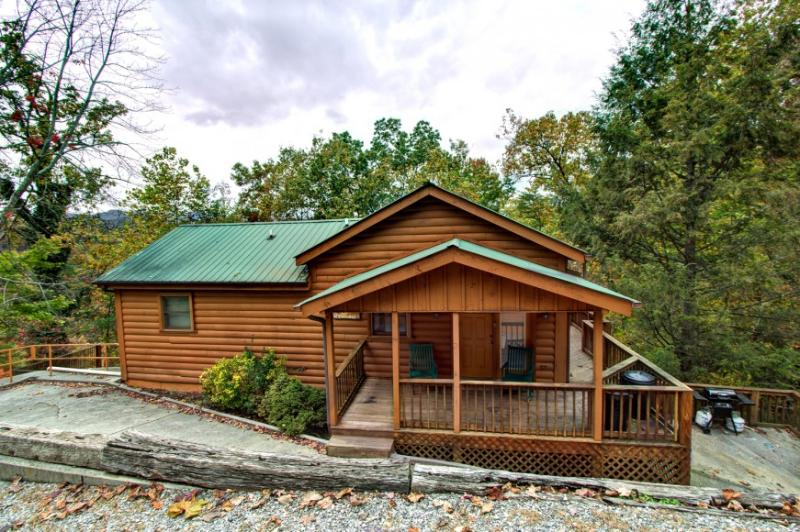 OBER VIEW LODGE - Image 1 - Gatlinburg - rentals