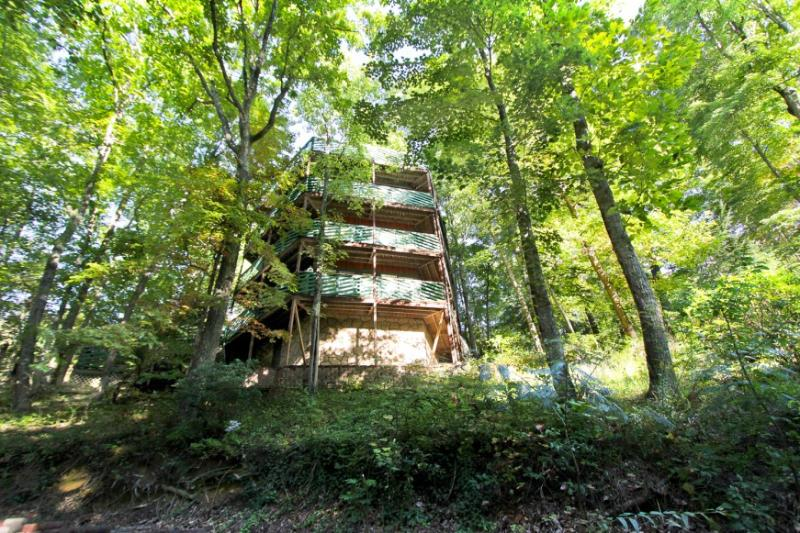 TREE HOUSE - Image 1 - Gatlinburg - rentals