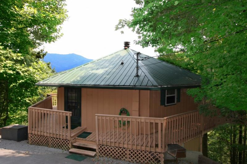 PERFECT POINTE OF VIEW - Image 1 - Gatlinburg - rentals