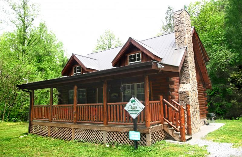 BEARY DASHING - Image 1 - Gatlinburg - rentals