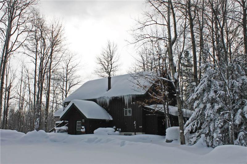 Ski Inn - Image 1 - Bessemer - rentals
