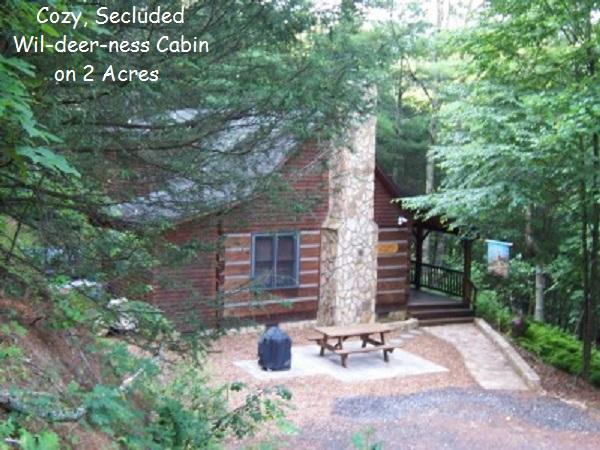 WIL-DEER-NESS CABIN-Hot Tub*Firepit*Secluded*River - Image 1 - West Jefferson - rentals