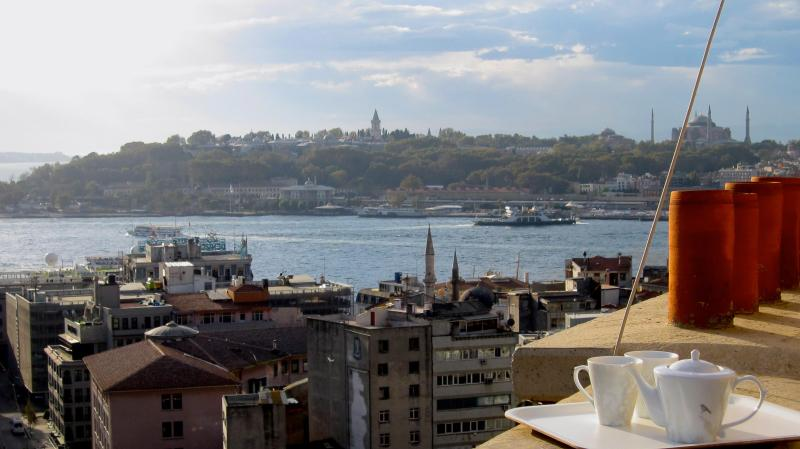 Fabulous views from shared roof-top terrace - spacious and elegant, in the heart of galata - Istanbul - rentals