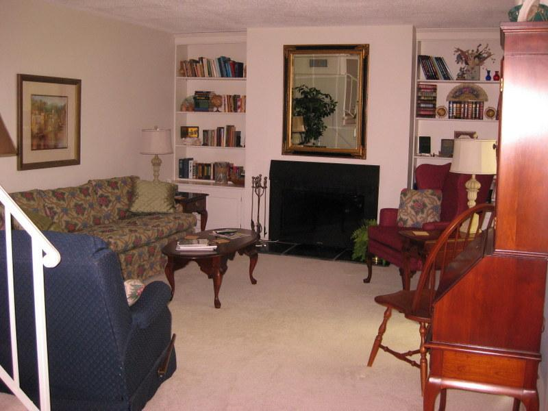 Living Room - Centrally located 2-Bedrm condo in South Lexington - Lexington - rentals