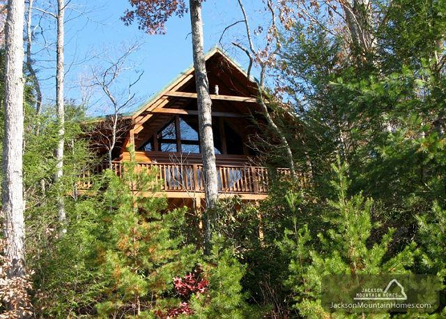 Cub's Corner   Pool Access Hot Tub Pool Table Great Views  Free Nights - Image 1 - Gatlinburg - rentals