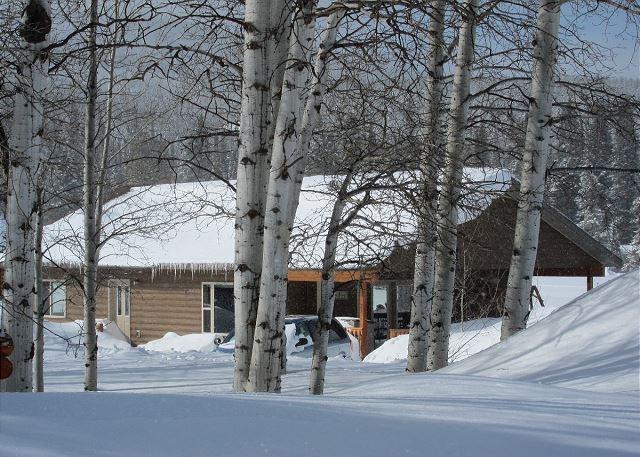 Lone Pine Lodge - Image 1 - West Yellowstone - rentals