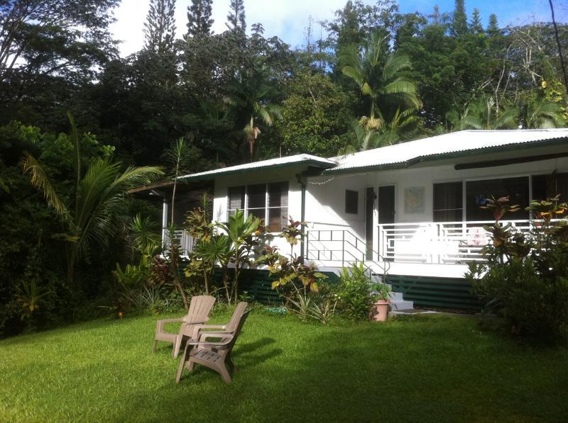Jungle Farmhouse on 2.3 acres - The Jungle Farmhouse - Pahoa - rentals