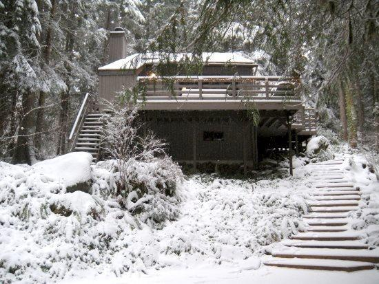 The front of Cabin 26 - Snowline Cabin #26 - A great 2-story cabin with a private hot tub! - Glacier - rentals