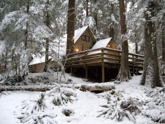 Cabin 86 in the snow - Snowline Cabin #86 A very rustic pet friendly Cabin with wood burning stove - Glacier - rentals