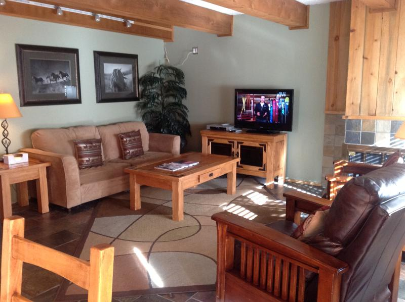By Gondola Lionshead 2bd/2ba Low Rates Gold-Rated - Image 1 - Vail - rentals