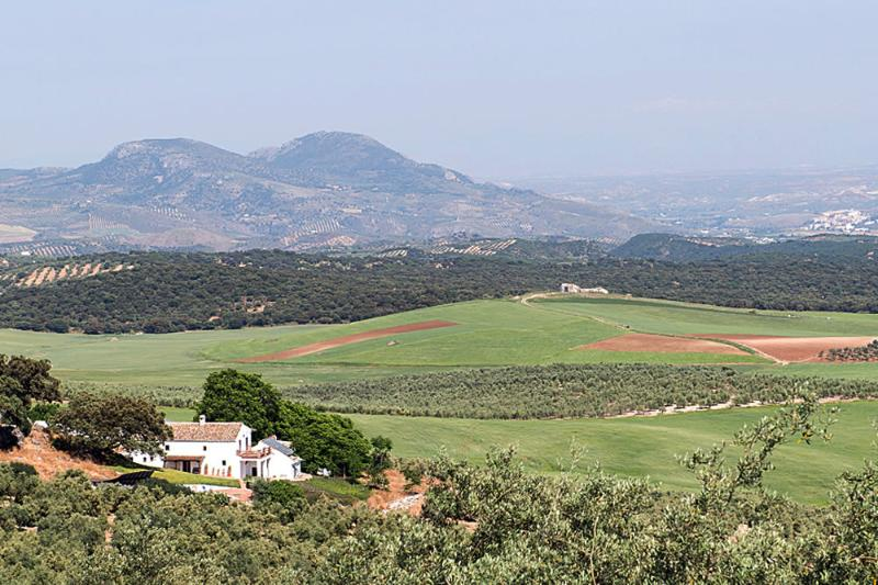 Finca Farmhouse with mature garden and fantastic atmospheric views - Big House Family Group Villa Finca El Almendrillo - Granada - rentals