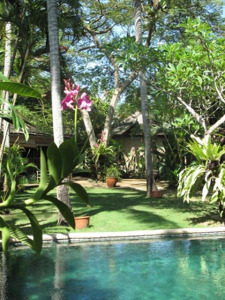 11 BDR Estate, 5* Luxury, Great Location, Perfect - Image 1 - Bali - rentals