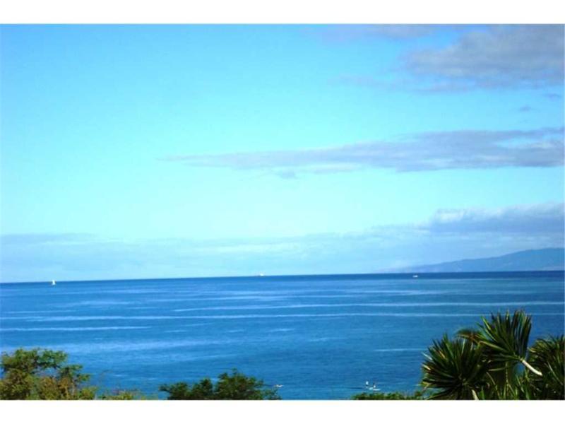 Maui Kamaole #a-204 - Image 1 - Kihei - rentals