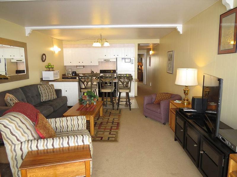 Lake Dillon Condos 210 - Image 1 - Dillon - rentals