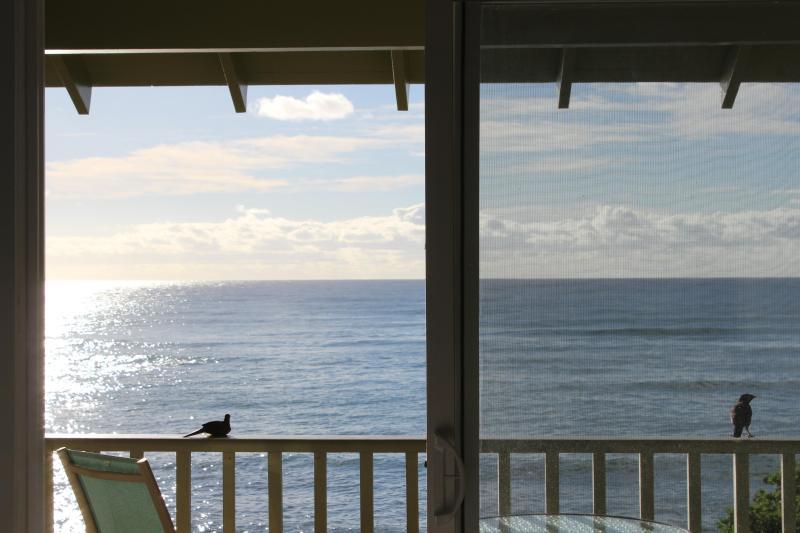Full unobstructed ocean views - KAPAA SANDS DIRECT OCEAN FRONT - Kapaa - rentals