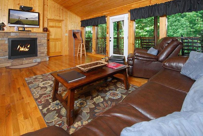 A Beary Cozy Escape - Image 1 - Sevierville - rentals