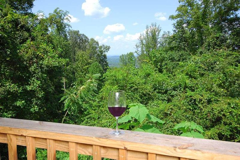 Knotty And Nice - Image 1 - Pigeon Forge - rentals