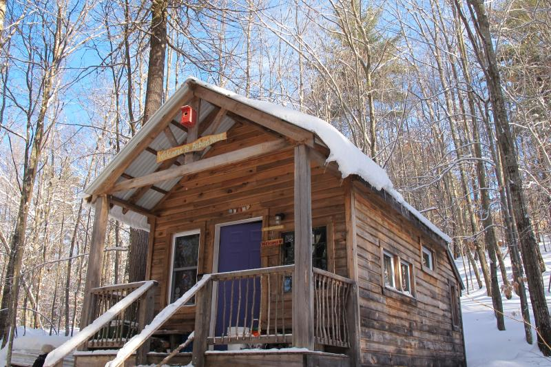 Thoreau's Eco-Cabin in Maine Woods - Image 1 - Denmark - rentals
