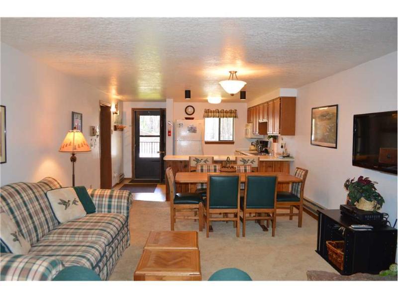 Beaver Village Condominiums #1523 - Image 1 - Tabernash - rentals