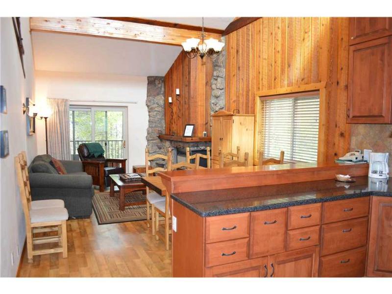 Beaver Village Condominiums #1734 - Image 1 - Winter Park - rentals