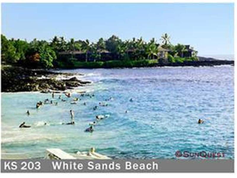Kona Magic Sands #203 - Image 1 - Kailua-Kona - rentals