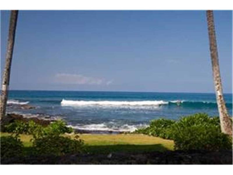 Kona Reef #A6 - Image 1 - Kailua-Kona - rentals