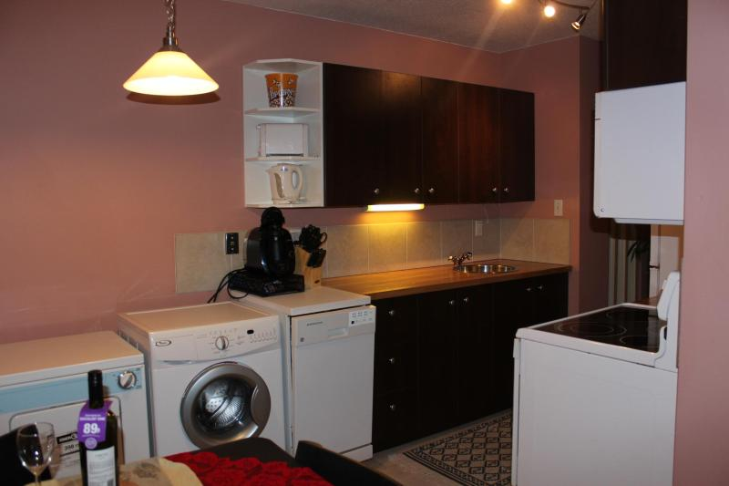 Bright&clean 1BD apt by LRT in centre of EDMONTON - Image 1 - Alberta - rentals