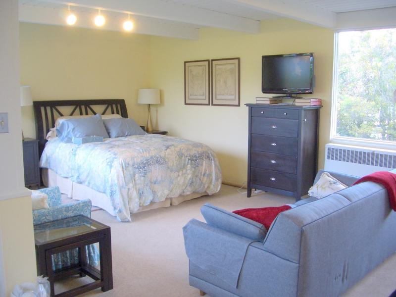 QUEEN BED, QUEEN SOFABED, TV/DVD - Oakland-Rockridge. Views. BART/Bus/SF/UC. Sleeps 4 - Oakland - rentals