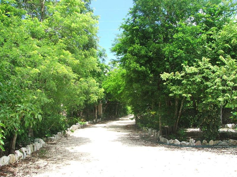 entrance - Casita in Jungle Paradise - Puerto Aventuras - rentals