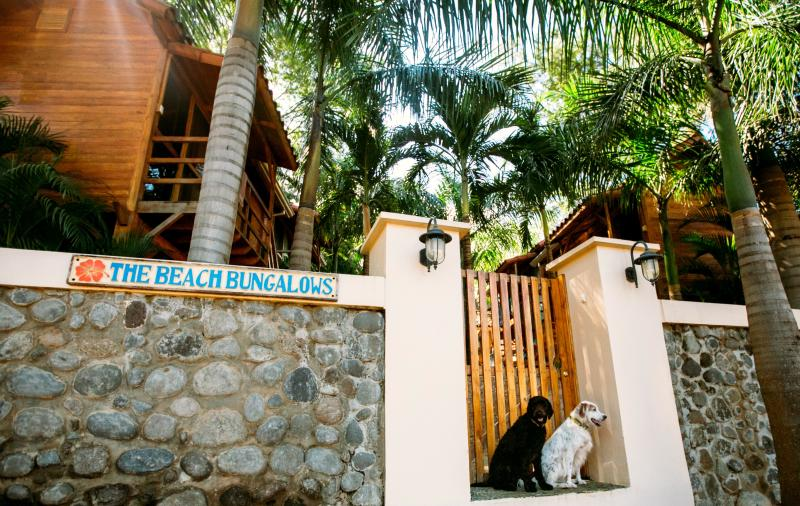 Welcome to our little piece of paradise! - Fabulous Raised Teak Bungalow! - Tamarindo - rentals