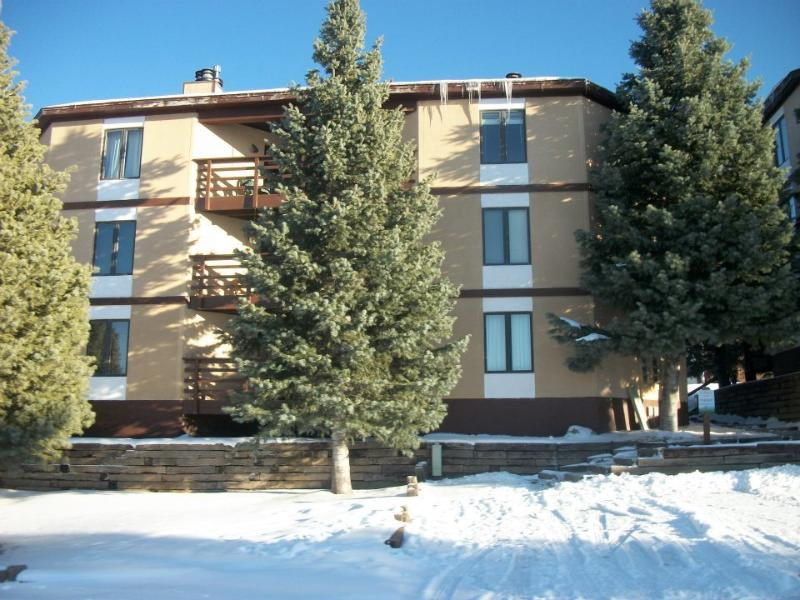 Located on ground level - Ground level & FREE WiFi - Angel Fire - rentals