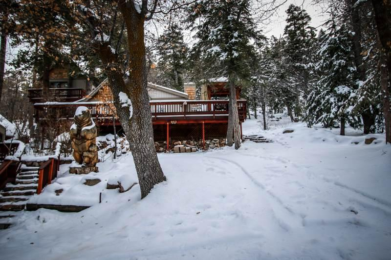 Knickerbocker Lodge  #1397 - Image 1 - Big Bear Lake - rentals
