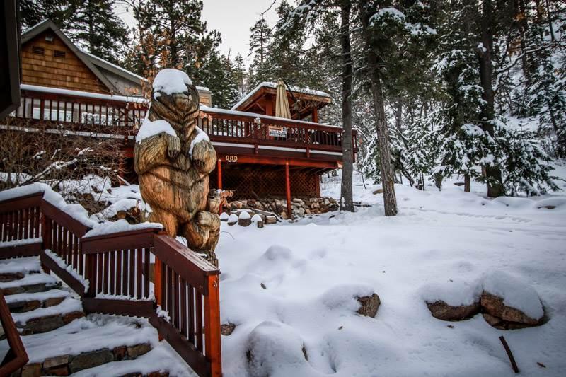 Knickerbocker Lodge  #1397 - Image 1 - Big Bear Lake - rentals
