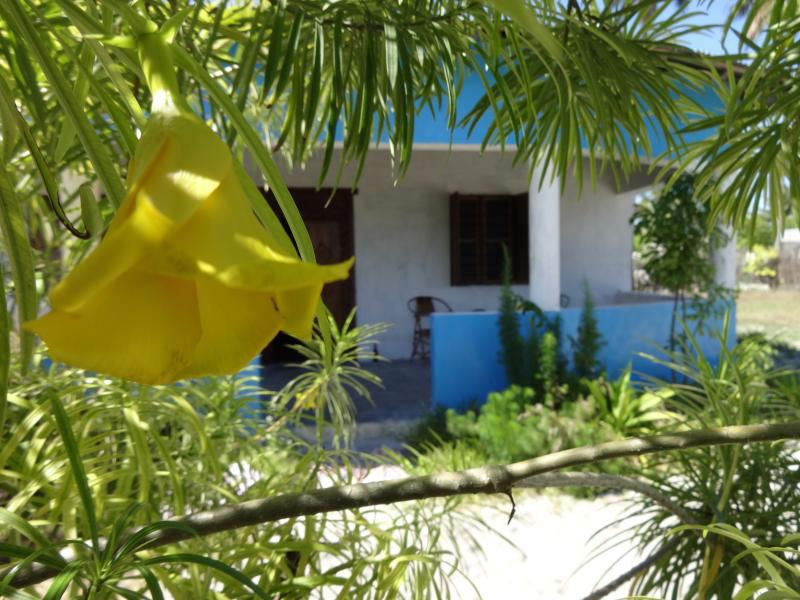 Feel free - Luis Holiday House Jambiani Zanzibar - Jambiani - rentals