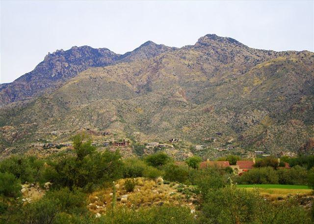 Elegantly appointed, fully furnished condo with stunning mountain views - Image 1 - Tucson - rentals