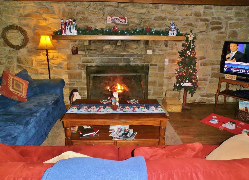 Cozy family room with gas fireplace, flat screen tv and 200+ movie library - The Oaks Log Cabin - Nashville - rentals