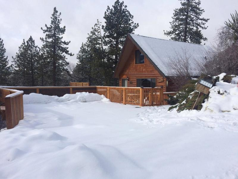Let it snow! Just minutes away and overlooking both ski resorts! - Milo Bear Cabin - Ski views, spa, dogs welcome - Big Bear Lake - rentals