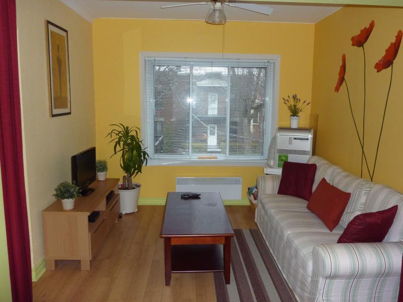 Living room - Fully furnished apartment located in a quiet neigh - Montreal - rentals
