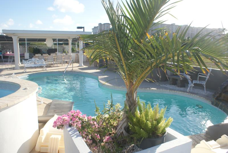 back garden pool - From $99 P/N 2 pers,PALM BEACH, MODERN WORLD ARUBA - Palm/Eagle Beach - rentals
