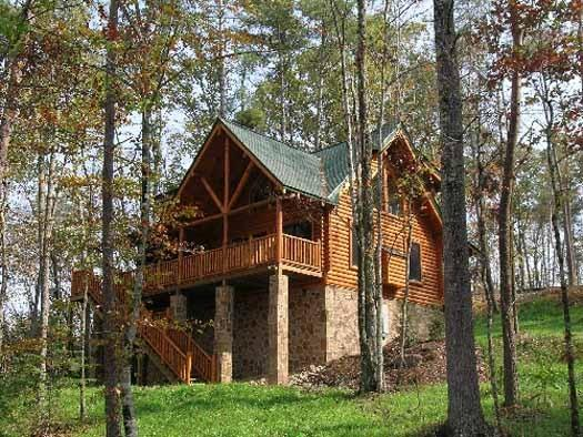 WHERE BEARS PLAY - Image 1 - Pigeon Forge - rentals