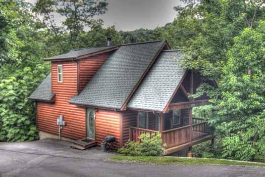 KNOTTY & NICE - Image 1 - Pigeon Forge - rentals