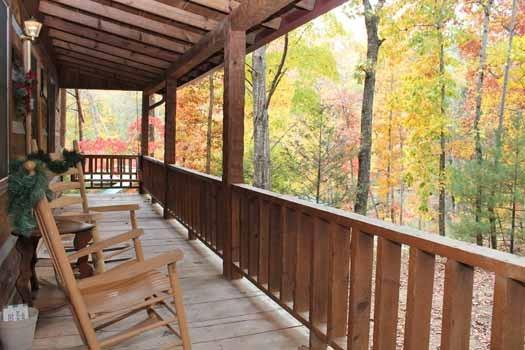 LITTLE BEAR - Image 1 - Pigeon Forge - rentals