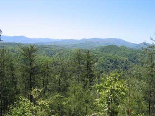 CLOSE TO HEAVEN - Image 1 - Pigeon Forge - rentals