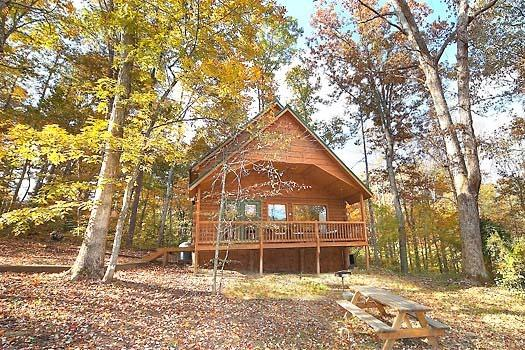 LICKLOG HOLLOW - Image 1 - Pigeon Forge - rentals