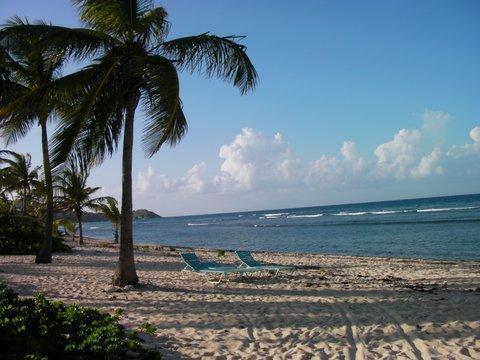 Relax and snorkel in the privacy of Pelican Cove beach. - SALE: Dolphin's Paradise at Pelican Cove - Christiansted - rentals