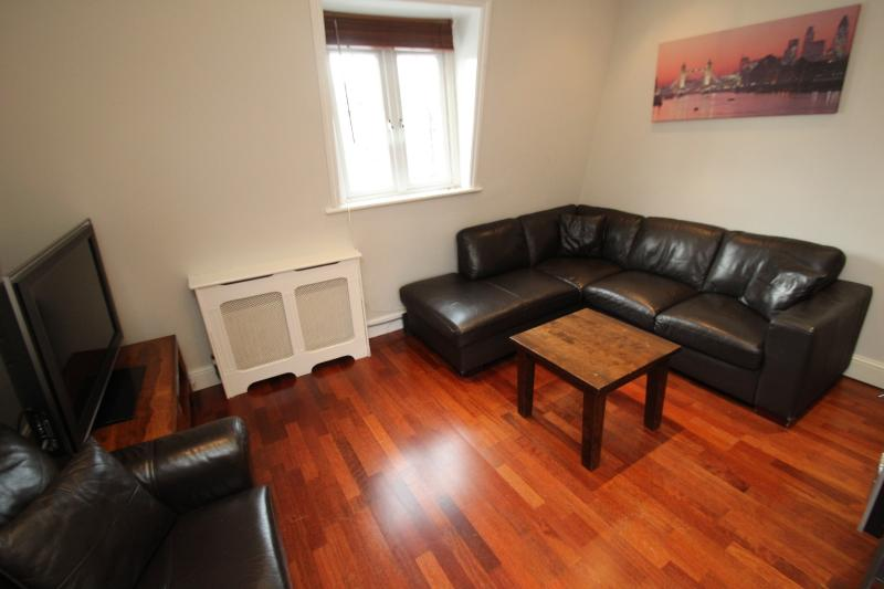Castletown House's Three Bedroom Apartment - Image 1 - London - rentals