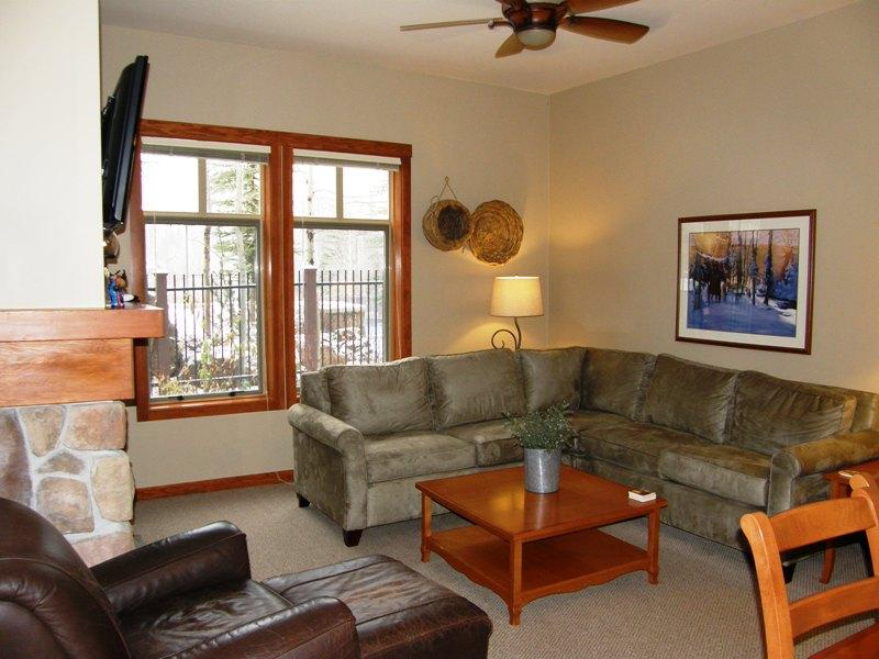 Remodeled Open Floor Plan... - Eagle Springs East #101 - Solitude - rentals
