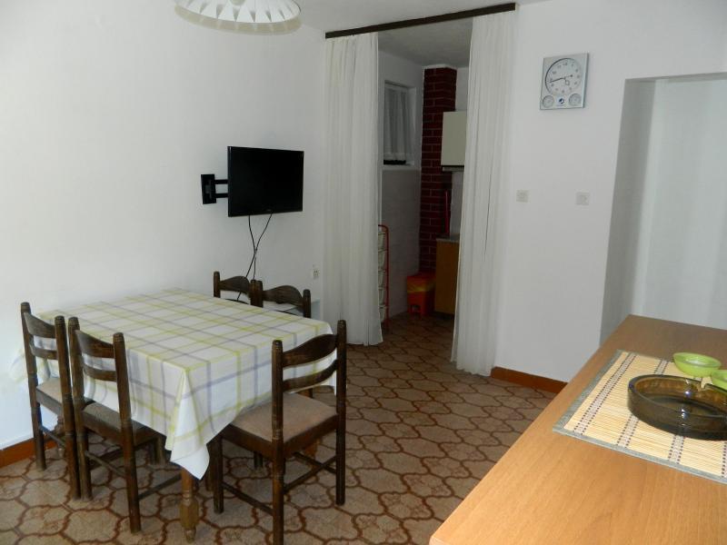 Apartments Milan - 13571-A1 - Image 1 - Rogoznica - rentals