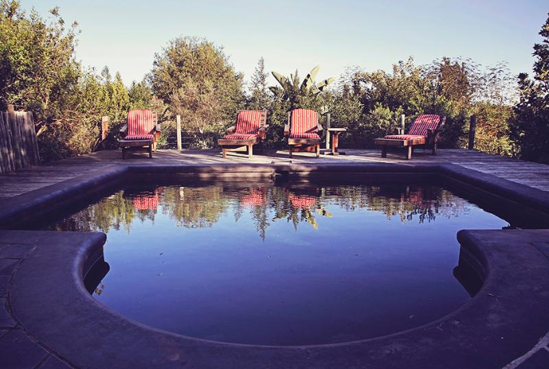 The Swimming Pool at That Place - That Place: self catering house - South Africa - rentals